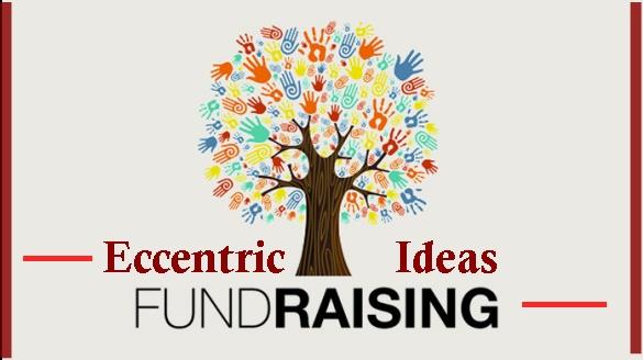 Pragmatic ideas for startup NGO