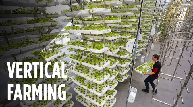 Future of farming: Silicon valley (Corps one) ventures with Emirates Airlines Dubai